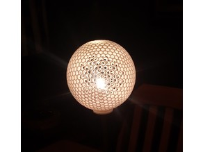 Globe Light Shade
