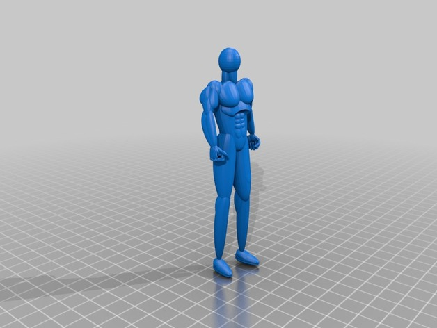 Human Body Tinkerdummy By The Dark Knight Thingiverse