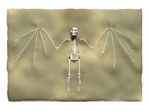 Homo nosferatu vampiris Dracula Vampire Fossil
