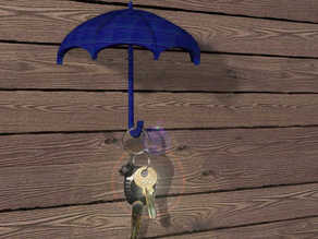 umbrella for your keys