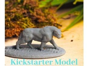 Panther - Kickstarter Test Model
