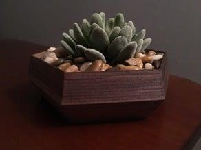 Hexagonal Succulent Planter