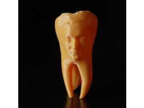 Toothtrait