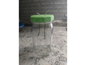 Wide Mouth Jar Lid With Lead Holes - electrolysis