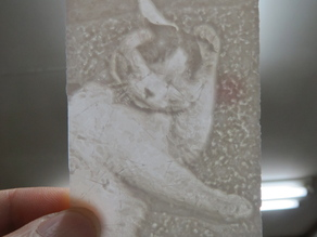 lithophane cat