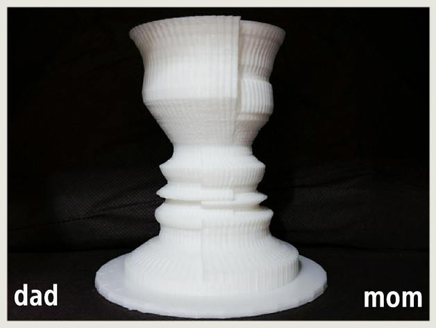 2 Face Flower Vase Illusion By 3dppark Thingiverse