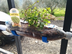 plastic bottle plant hook