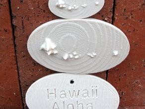 Souvenir for Hawaii