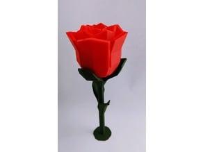 Low poly Rose