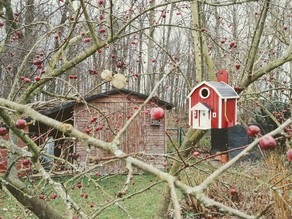 SWEDISH BIRD HOUSE