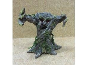 The 'spookiest' tree around