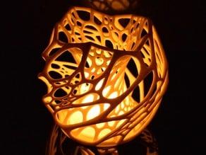 Cellular Lamp diffuser