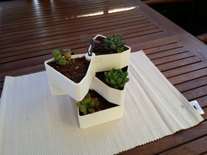 Garden Rotation Pot for small flowers
