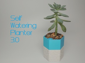 Self-watering Planter 3