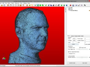 Cory Doctorow's decimated head for 3D printing - 45000 triangles