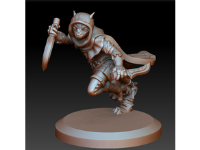 Kobold dragonborn rogue