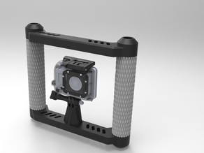 Go Pro fig rig, steady.