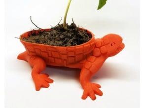 Draudi Planter