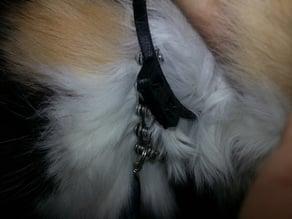"Custom Cat Collar Initials ""FB"" 70mm"