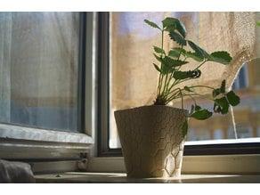 honeycomb planter #1