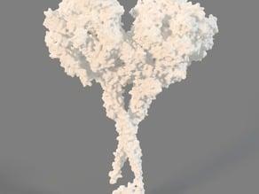 Dynein Molecule