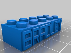 BRADLEY Lego Block
