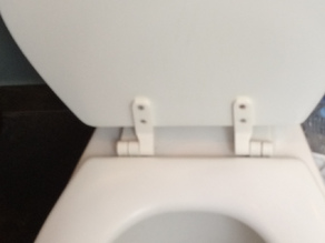 Toilet Seat Hinge Replacement - Mirror