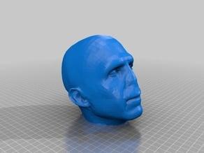 Voldemort Head