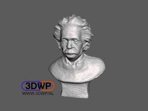Einstein Sculpture (Bust 3D Scan)