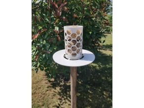 Bird feeder for winter food ball