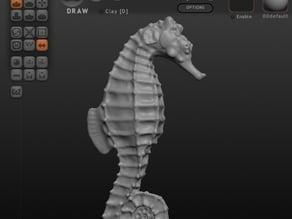 Seahorse_3PS