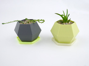 Hexagon Planter Dish