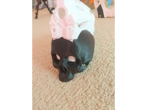 Caliburn - Magwell Skull Shroud