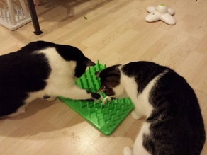 Cat Toy - play board