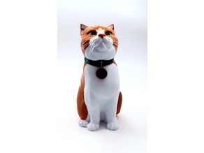 SCHRODINKY! BLANK CAT COLLAR MEDAL