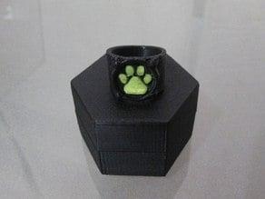 Chat Noir's Ring