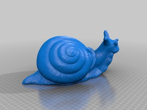 Snail (with flat bottom)