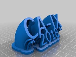 CA-IX 2018
