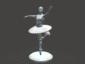 Ballet Dancer 03