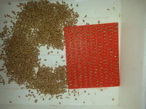 Thousand grains weight